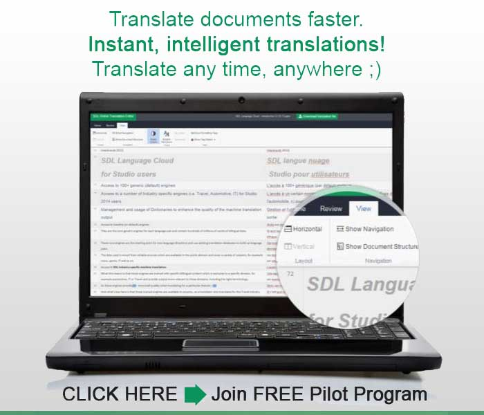 How to Become a Sought After Virtual Assistant Translator